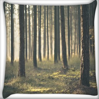 Snoogg Forest Surface Digitally Printed Cushion Cover Pillow 16 x 16 Inch