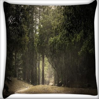Snoogg Thin Pathway Digitally Printed Cushion Cover Pillow 16 x 16 Inch