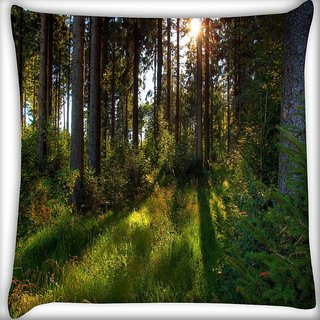 Snoogg No Way Forest Digitally Printed Cushion Cover Pillow 16 x 16 Inch
