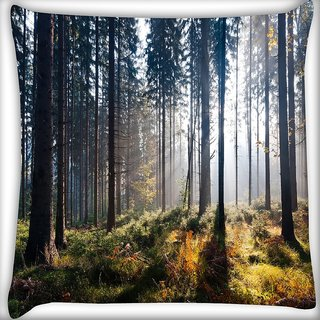 Snoogg Dense Forest In Sunlight Digitally Printed Cushion Cover Pillow 16 x 16 Inch