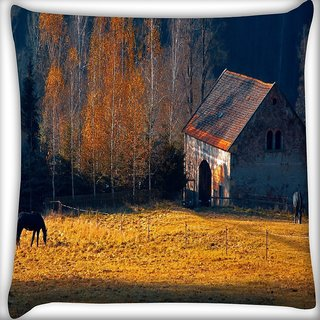 Snoogg Horse Shed Digitally Printed Cushion Cover Pillow 16 x 16 Inch