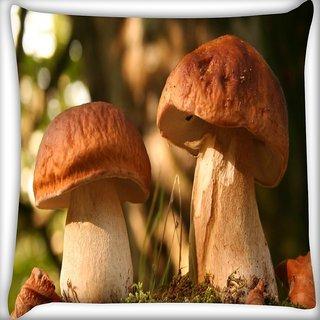 Snoogg Abstract Mushroom Digitally Printed Cushion Cover Pillow 16 x 16 Inch