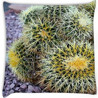 Snoogg  barrel cactus Digitally Printed Cushion Cover Pillow 16 x 16 Inch