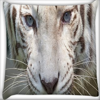 Snoogg White Tiger Digitally Printed Cushion Cover Pillow 16 x 16 Inch