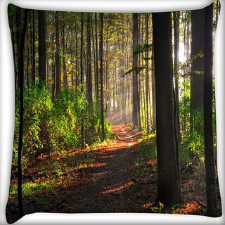 Snoogg Abstract Pathway Digitally Printed Cushion Cover Pillow 16 x 16 Inch