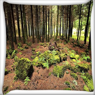 Snoogg Abstract Rocks In Forest Digitally Printed Cushion Cover Pillow 16 x 16 Inch