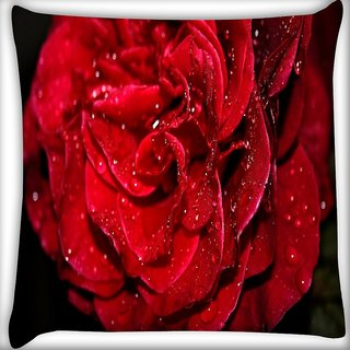 Snoogg Water On Red Rose Digitally Printed Cushion Cover Pillow 16 x 16 Inch