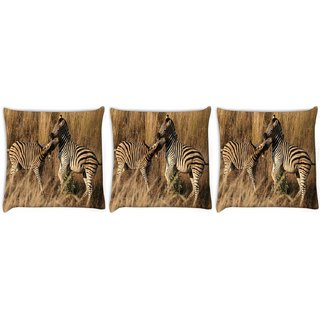 Snoogg Pack Of 3 Group Of Zebra Digitally Printed Cushion Cover Pillow 14 x 14 Inch