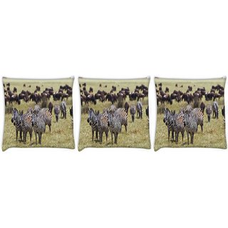 Snoogg Pack Of 3 Black And White Zebra Digitally Printed Cushion Cover Pillow 14 x 14 Inch