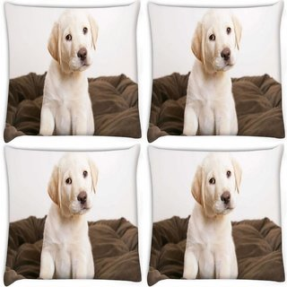 Snoogg Pack Of 4 Cute Puppy Eyes Wide Digitally Printed Cushion Cover Pillow 8 X 8 Inch