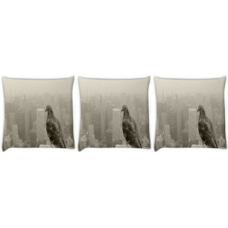 Snoogg Pack Of 3 Empire State Pigeon Digitally Printed Cushion Cover Pillow 8 X 8 Inch