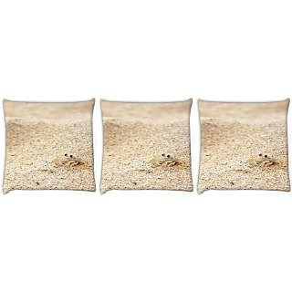 Snoogg Pack Of 3 Beach Sand Crab Digitally Printed Cushion Cover Pillow 24 X 24Inch
