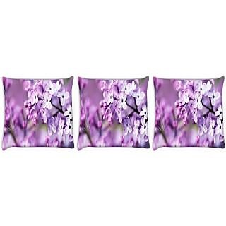 Snoogg Pack Of 3 Flores Lindas Digitally Printed Cushion Cover Pillow 24 X 24Inch