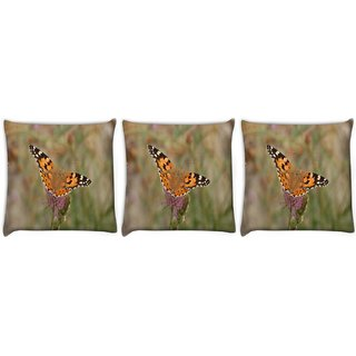 Snoogg Pack Of 3 Tiger Butterfly Digitally Printed Cushion Cover Pillow 24 X 24Inch