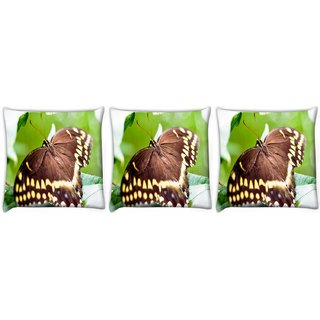 Snoogg Pack Of 3 Brown Butterfly Digitally Printed Cushion Cover Pillow 24 X 24Inch