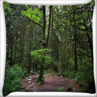 Snoogg Tall Trees Digitally Printed Cushion Cover Pillow 24 X 24 Inch