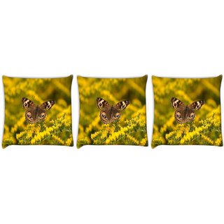 Snoogg Pack Of 3 Multicolor Flying Butterfly Digitally Printed Cushion Cover Pillow 24 X 24Inch