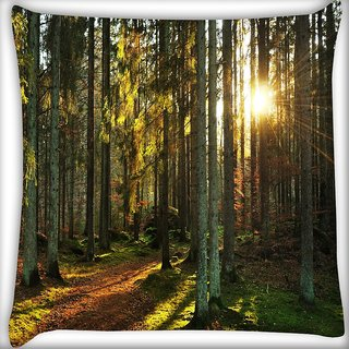 Snoogg Abstract Sunlight In Forest Digitally Printed Cushion Cover Pillow 24 X 24 Inch