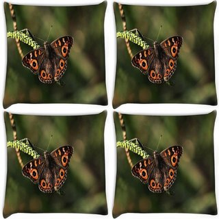 Snoogg Pack Of 4 Brown Butterfly Digitally Printed Cushion Cover Pillow 10 x 10 Inch