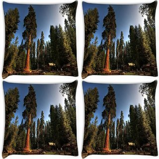 Snoogg Pack Of 4 Tall Trees Digitally Printed Cushion Cover Pillow 10 x 10 Inch