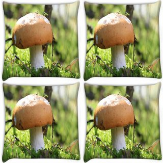 Snoogg Pack Of 4 Yummy Mushroom Digitally Printed Cushion Cover Pillow 10 x 10 Inch