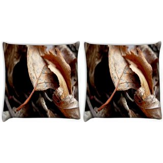 Snoogg Pack Of 2 Dry Leaves Digitally Printed Cushion Cover Pillow 10 x 10 Inch