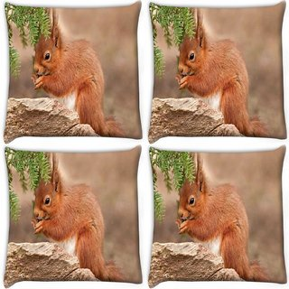 Snoogg Pack Of 4 Cute Squarril Digitally Printed Cushion Cover Pillow 10 x 10 Inch