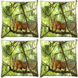 Snoogg Pack Of 4 Squarril Running Digitally Printed Cushion Cover Pillow 10 x 10 Inch