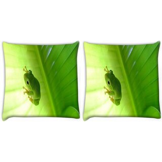 Snoogg Pack Of 2 Green Frog Digitally Printed Cushion Cover Pillow 10 x 10 Inch