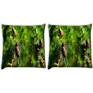 Snoogg Pack Of 2 Multiple Wooden Flower Digitally Printed Cushion Cover Pillow 10 x 10 Inch