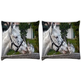 Snoogg Pack Of 2 Horse And Cat Digitally Printed Cushion Cover Pillow 10 x 10 Inch