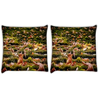 Snoogg Pack Of 2 Dried Leaves On The Ground Digitally Printed Cushion Cover Pillow 10 x 10 Inch
