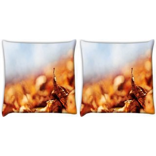 Snoogg Pack Of 2 Leaf About To Fall Digitally Printed Cushion Cover Pillow 10 x 10 Inch