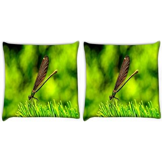 Snoogg Pack Of 2 Drangon Fly On Grass Digitally Printed Cushion Cover Pillow 10 x 10 Inch