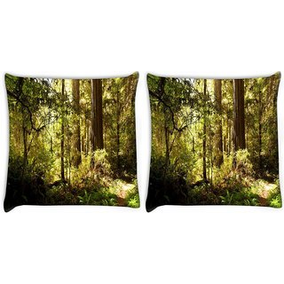 Snoogg Pack Of 2 Small Pathway In Dense Forest Digitally Printed Cushion Cover Pillow 10 x 10 Inch