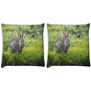 Snoogg Pack Of 2 Couple Of Rabbit Digitally Printed Cushion Cover Pillow 10 x 10 Inch