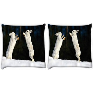 Snoogg Pack Of 2 Hiding Story Digitally Printed Cushion Cover Pillow 10 x 10 Inch