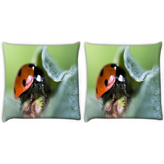 Snoogg Pack Of 2 Dangerous Beatel Digitally Printed Cushion Cover Pillow 10 x 10 Inch