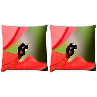 Snoogg Pack Of 2 Beatel On Red Leaves Digitally Printed Cushion Cover Pillow 10 x 10 Inch