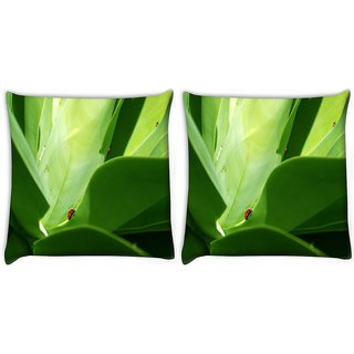 Snoogg Pack Of 2 Big Leaves Digitally Printed Cushion Cover Pillow 10 x 10 Inch