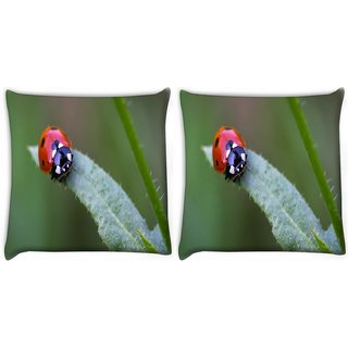 Snoogg Pack Of 2 Small Beatel Digitally Printed Cushion Cover Pillow 10 x 10 Inch