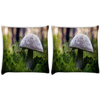 Snoogg Pack Of 2 Grey Mushrom Digitally Printed Cushion Cover Pillow 10 x 10 Inch