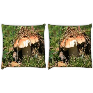 Snoogg Pack Of 2 Broken Mushroom Digitally Printed Cushion Cover Pillow 10 x 10 Inch