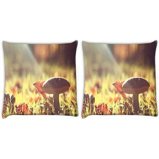 Snoogg Pack Of 2 Sunlight Mushroom Digitally Printed Cushion Cover Pillow 10 x 10 Inch