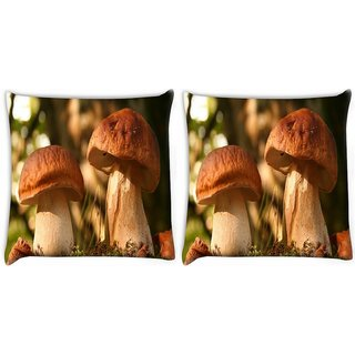 Snoogg Pack Of 2 Abstract Mushroom Digitally Printed Cushion Cover Pillow 10 x 10 Inch