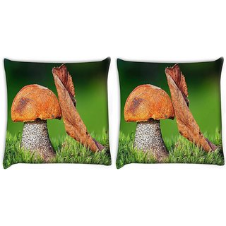 Snoogg Pack Of 2 Mushroom And Dried Leaf Digitally Printed Cushion Cover Pillow 10 x 10 Inch