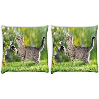 Snoogg Pack Of 2 Cat Playing Digitally Printed Cushion Cover Pillow 10 x 10 Inch