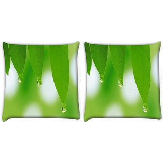 Snoogg Pack Of 2 Leaves Dew Drops Digitally Printed Cushion Cover Pillow 10 x 10 Inch
