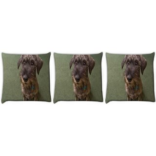 Snoogg Pack Of 3 Dog Shocking Face Digitally Printed Cushion Cover Pillow 12 x 12 Inch