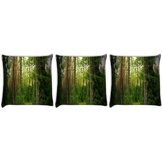 Snoogg Pack Of 3 Wooden Trees Used Digitally Printed Cushion Cover Pillow 12 x 12 Inch